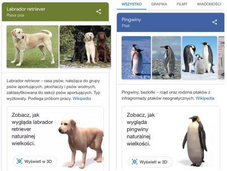 Widoki 3d w Google